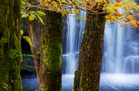 Waterfall Country, Brecon Beacons in autumn